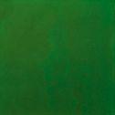 Uroboros 90 Fern Green Opal