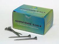 horsehoe nails